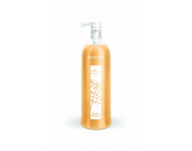 Jean Paul Mynè Sesame Shampoo 250ml